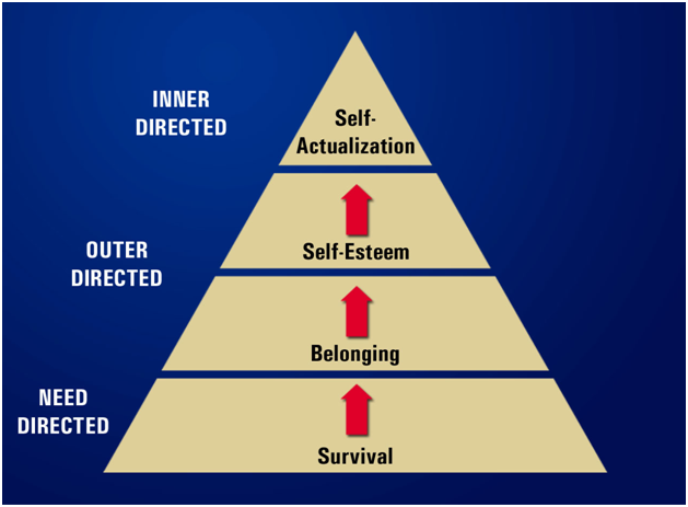 Maslow's Hierarchy of Needs for Real Estate Professionals as perceived by Parker Associates